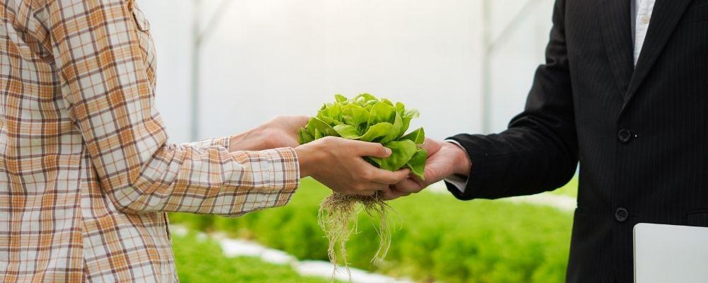 agri food supply chain
